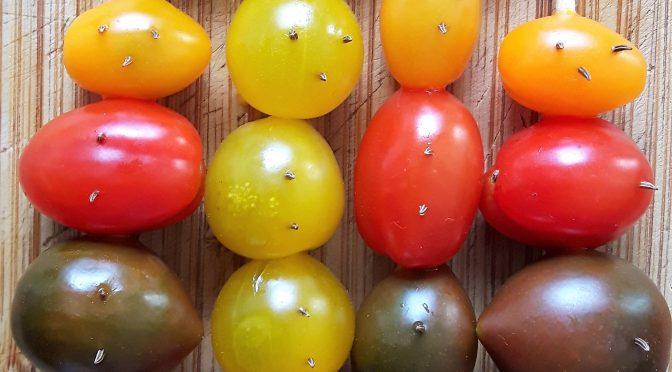 Tomatenmänner